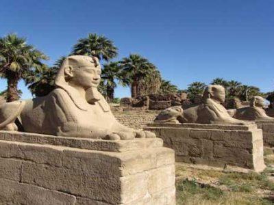 Tagesausflug nach Luxor mit dem Bus ab Makadi Bay Luxor