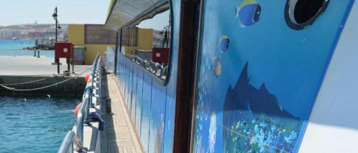 Extra Egypt Ausflug Happy Dolphin seitlich4