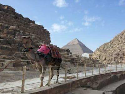 Tagesausflug ab El Gouna mit Bus nach Kairo
